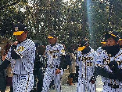 f:id:kabutoyama-tigers:20180321152238j:plain