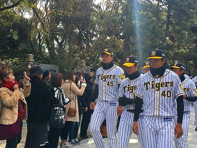 f:id:kabutoyama-tigers:20180321153925j:plain
