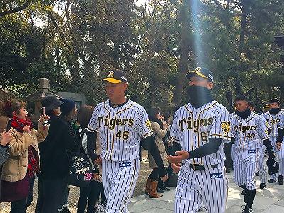 f:id:kabutoyama-tigers:20180321163043j:plain