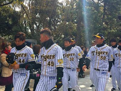 f:id:kabutoyama-tigers:20180321163615j:plain