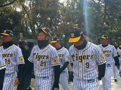 f:id:kabutoyama-tigers:20180321164033j:plain