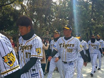 f:id:kabutoyama-tigers:20180321165510j:plain