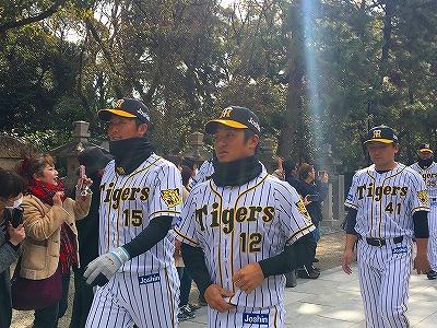 f:id:kabutoyama-tigers:20180321165615j:plain