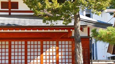 f:id:kabutoyama-tigers:20180425124858j:plain