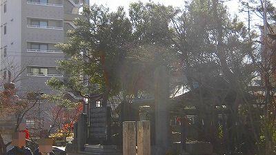 f:id:kabutoyama-tigers:20180425131927j:plain