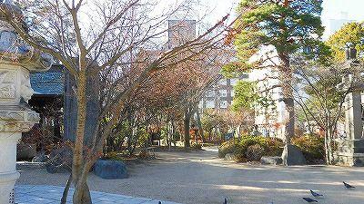f:id:kabutoyama-tigers:20180425134203j:plain