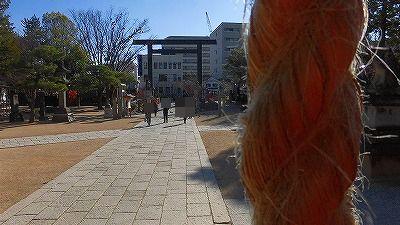 f:id:kabutoyama-tigers:20180425134853j:plain
