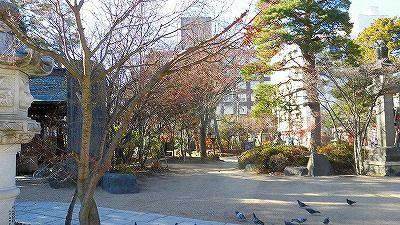 f:id:kabutoyama-tigers:20180425140029j:plain
