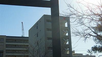 f:id:kabutoyama-tigers:20180425142618j:plain
