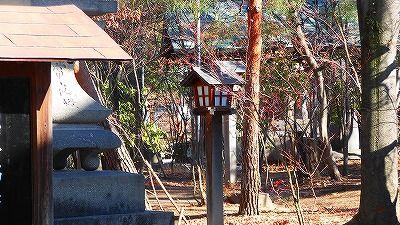f:id:kabutoyama-tigers:20180425145144j:plain