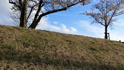 f:id:kabutoyama-tigers:20180425154604j:plain