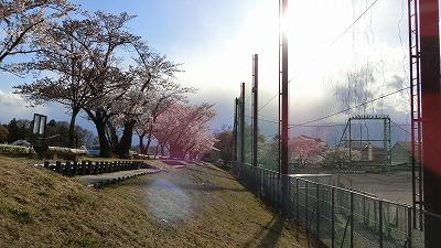 f:id:kabutoyama-tigers:20180425155441j:plain