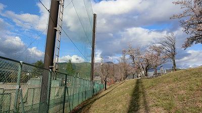 f:id:kabutoyama-tigers:20180425155800j:plain