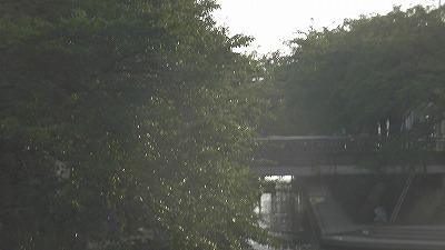 f:id:kabutoyama-tigers:20180502211959j:plain