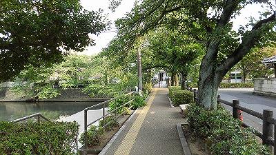 f:id:kabutoyama-tigers:20180503151335j:plain