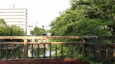 f:id:kabutoyama-tigers:20180503153908j:plain