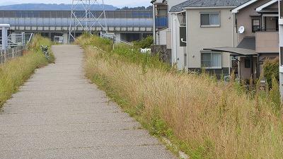 f:id:kabutoyama-tigers:20180613161419j:plain