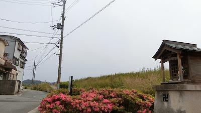 f:id:kabutoyama-tigers:20180613163256j:plain