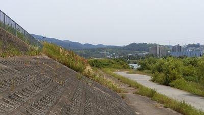 f:id:kabutoyama-tigers:20180613164045j:plain