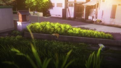f:id:kabutoyama-tigers:20180613171057j:plain