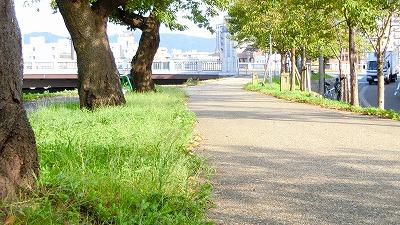 f:id:kabutoyama-tigers:20181028125519j:plain