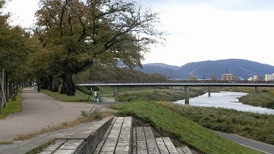 f:id:kabutoyama-tigers:20181028130602j:plain