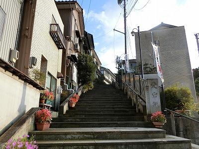 f:id:kabutoyama-tigers:20181028150639j:plain