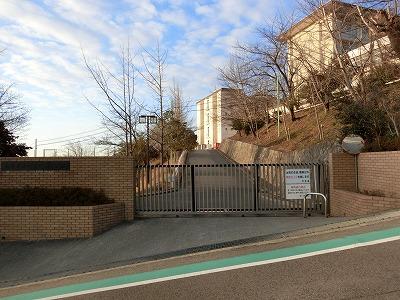 f:id:kabutoyama-tigers:20190112064108j:plain