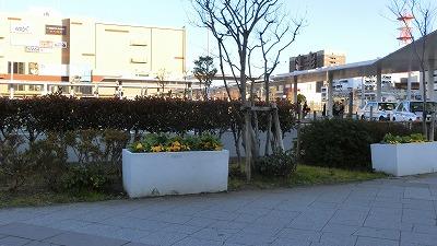 f:id:kabutoyama-tigers:20190208173357j:plain