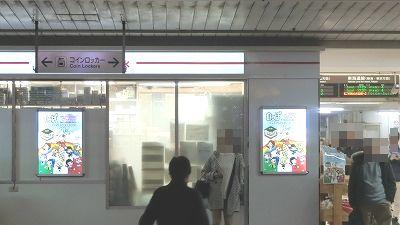 f:id:kabutoyama-tigers:20190211161612j:plain