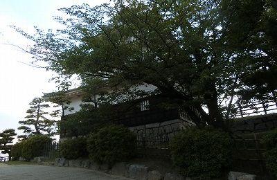 f:id:kabutoyama-tigers:20190529165012j:plain