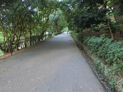 f:id:kabutoyama-tigers:20190529173129j:plain