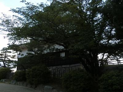 f:id:kabutoyama-tigers:20190529173244j:plain
