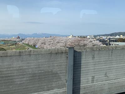 f:id:kabutoyama-tigers:20190531140239j:plain