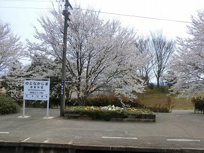 f:id:kabutoyama-tigers:20190531145619j:plain