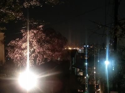 f:id:kabutoyama-tigers:20190610170447j:plain