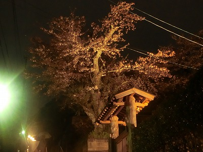 f:id:kabutoyama-tigers:20190610170600j:plain