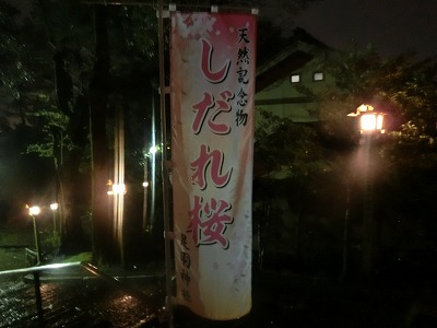 f:id:kabutoyama-tigers:20190610170636j:plain