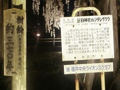 f:id:kabutoyama-tigers:20190610171618j:plain