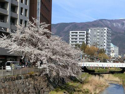 f:id:kabutoyama-tigers:20190630163424j:plain