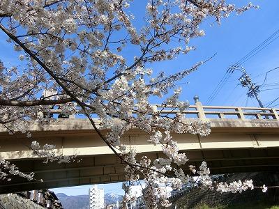 f:id:kabutoyama-tigers:20190630180336j:plain