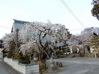 f:id:kabutoyama-tigers:20190703082905j:plain