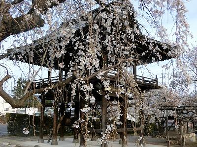 f:id:kabutoyama-tigers:20190703082945j:plain