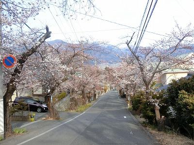 f:id:kabutoyama-tigers:20190703091557j:plain
