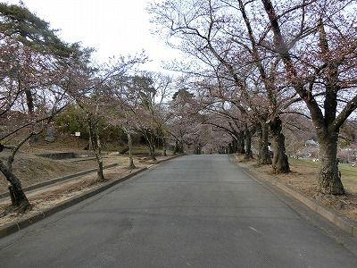 f:id:kabutoyama-tigers:20190703092240j:plain
