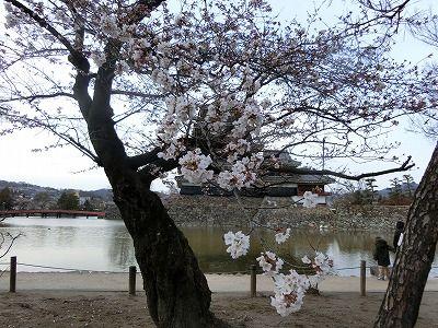 f:id:kabutoyama-tigers:20190703104209j:plain