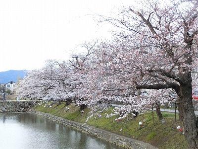f:id:kabutoyama-tigers:20190703104221j:plain
