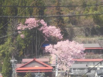 f:id:kabutoyama-tigers:20190717065006j:plain