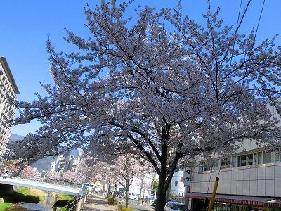 f:id:kabutoyama-tigers:20190717074205j:plain