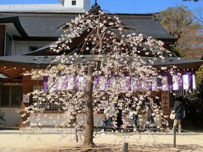 f:id:kabutoyama-tigers:20190717080243j:plain